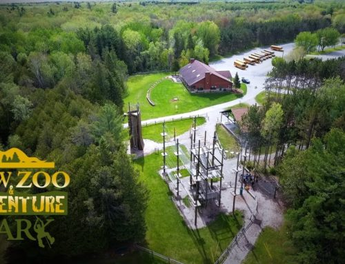 NEW Zoo Adventure Park